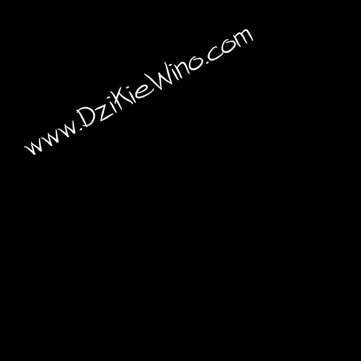 Wino pełne Smaku i Pasji- DZIKIE WINO - Jak zrobic wino? Przepisy i receptury. DzikieWino