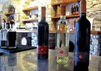domowa produkcja wina jak zrobic wino Enoturystyka Błażej Odyjas polskie wino winnica 05