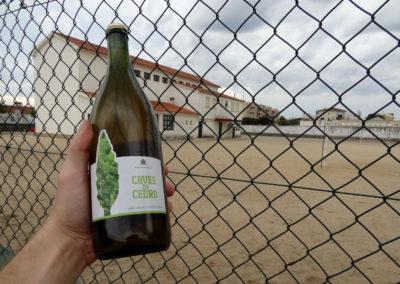 winko domowa produkcja wina jak zrobic wino Enoturystyka Dzikie Wino winnica Portugalia Vinho 03