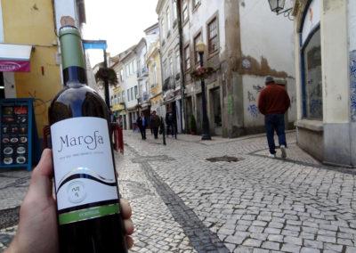 winko domowa produkcja wina jak zrobic wino Enoturystyka Dzikie Wino winnica Portugalia Vinho 09