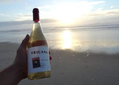 winko domowa produkcja wina jak zrobic wino Enoturystyka Dzikie Wino winnica Portugalia Vinho 10