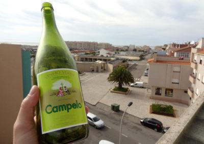 winko domowa produkcja wina jak zrobic wino Enoturystyka Dzikie Wino winnica Portugalia Vinho Verde 02