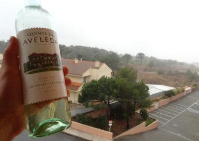 winko domowa produkcja wina jak zrobic wino Enoturystyka Dzikie Wino winnica Portugalia Vinho Verde 07