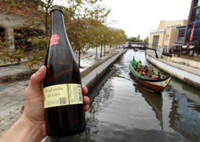 winko domowa produkcja wina jak zrobic wino Enoturystyka Dzikie Wino winnica Portugalia Vinho Verde 08